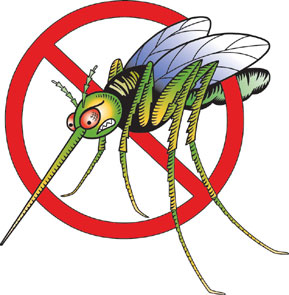 Repellent at Night to Avoid the Bite (Precautions about West Nile Virus Breakouts)